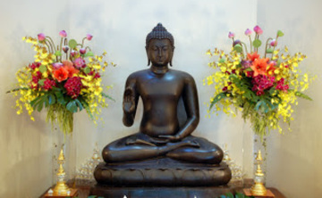 Meditation Retreat in the Tropics of Costa Rica
