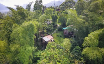 7-Day Yoga Retreat IMMERSION in the JUNGLE