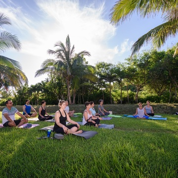 Yoga and Culture in Havana and Its Surroundings