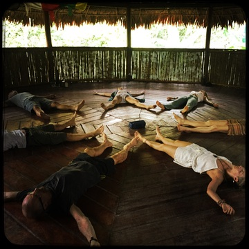 7 Day Shamanic Detox with Ayahuasca (January 2019)