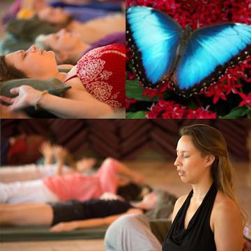 Clarity Breathwork PachaMama Costa Rica Levels 1–5