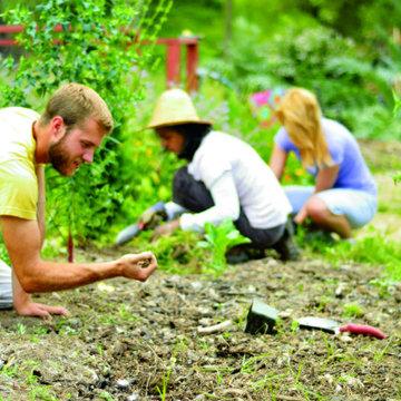 Permaculture Weekend: Ayurvedic Agroforestry