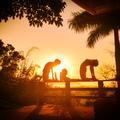 Centro Iyengar Yoga Florianopolis