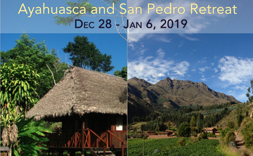 10-day Ayahuasca and San Pedro Retreat in Amazon/Sacred Valley