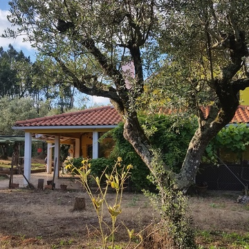 New Earth Portugal Holistic healing retreat
