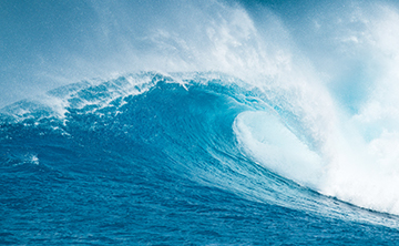 Surfing in the Sea of Change