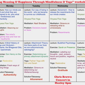 Cultivating Meaning and Happiness through Mindfulness and Yoga