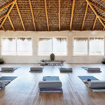Yin & Restorative 9 Day in Baja
