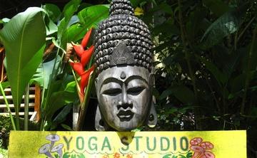 Mindful Living Wellness Travel Retreat