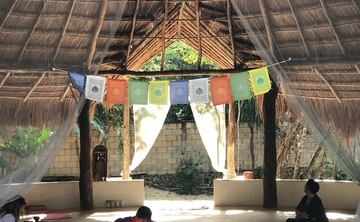 7-Day Ayahuasca Retreat, Mexican Riviera
