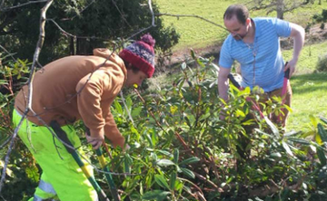 Volunteer every Tuesday & Thursday in Sharpham's gardens or on the wider estate