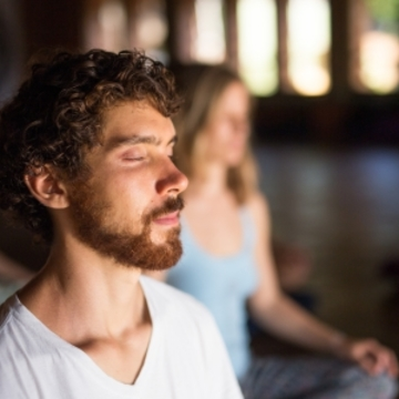 17-Day Hridaya Silent Meditation Retreat (in English)