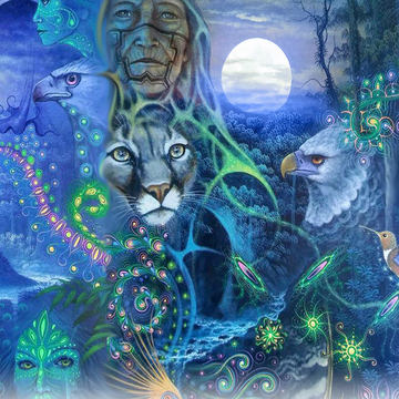 3 day 2 Night Ayahuasca Ceremony  Jun. 28-30