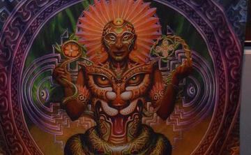 3 day 2 Night Ayahuasca Ceremony  Jan 11-13