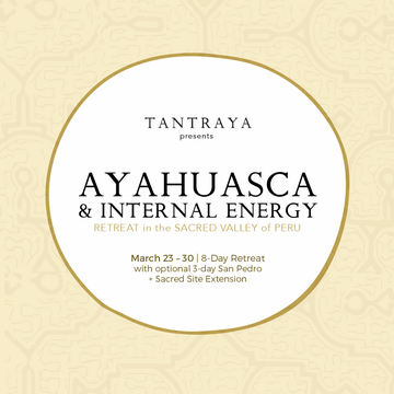 Ayahuasca + Internal Energy Retreat
