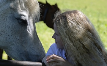 Connect with Horses Mindfulness Meditation Immersion