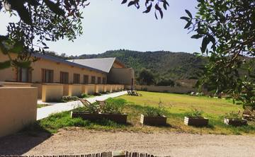 Yoga and meditation retreat in a centenary forest in Castellón Spain