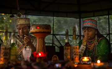 9 Day Ayahuasca Amazon Retreat