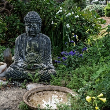 Essential Buddhist Teachings on Awakening: The Path of Zen