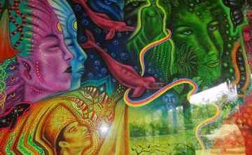 12 Day Ayahuasca Retreat