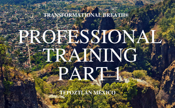 Transformational Breath® Level 4A: Mexico