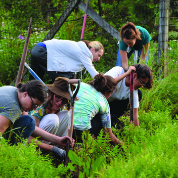 Permaculture Weekend:  Pruning and Plant Propagation