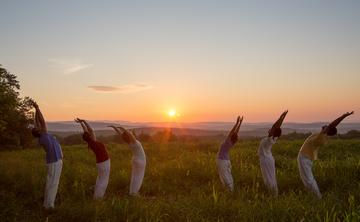 How to live like a yogi