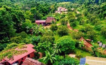 AWAKEN - Voice & Dance Jungle Journey Retreat - BELIZE