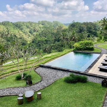 "7 Days Luxurious ""Divine Body"" Raw Food Detox & Yoga Retreat in Ubud, Bali"