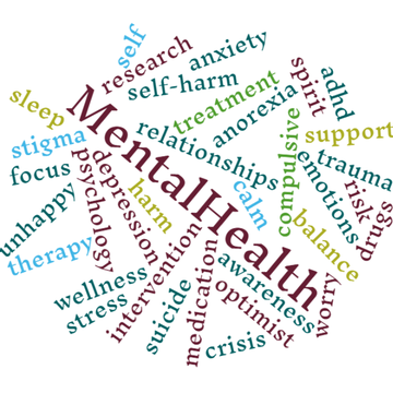 Mental Health First Aid – NEOS program