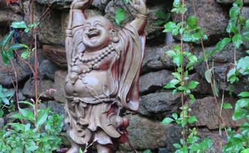 Guardians of the Heart: A Vipassana and Brahma Vihara Retreat