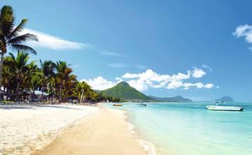 Mauritius Ayahausca Retreat (Dec 2018)
