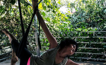 50H TTC - Aerial Yoga Teacher Training course