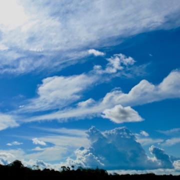 21 Day Total Evolution | Spirit Healing Ayahuasca Retreat