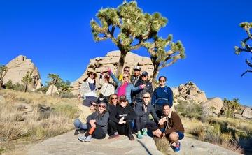 Desert Reset - Joshua Tree, California