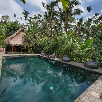 Meditation and Yoga Retreat (women) Bali - Ubud