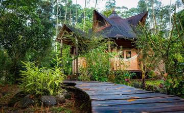 Rainforest Sanctuary and Lodge