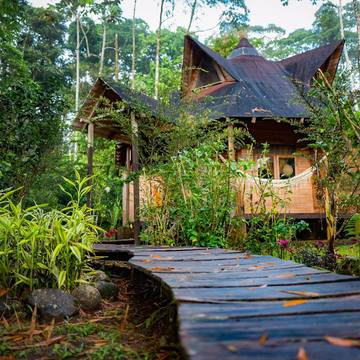 Rainforest Sanctuary and Lodge