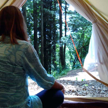 Woodland Retreat: Nature Connection for Women (3 nights)