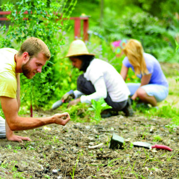 Permaculture Weekend: Yoga of Permaculture