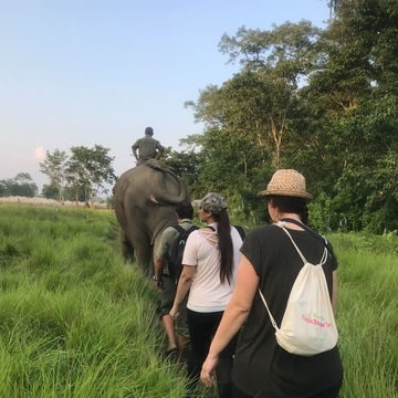 10-Day Pilgrimage to the Birthplace of the Buddha & Jungle Safari T