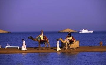 Yoga Escapes Retreat in Egypt