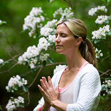 Weeklong Raja Yoga Immersion