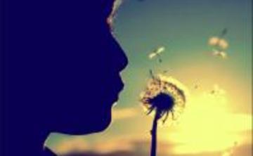 ONE DAY BEGINNERS MEDITATION - THE ART OF BEING HUMAN - SHAMBHALA LEVEL 1