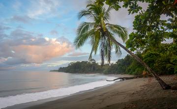 Costa Rica Yin Yang Yoga & Ayurveda Retreat with Kathy