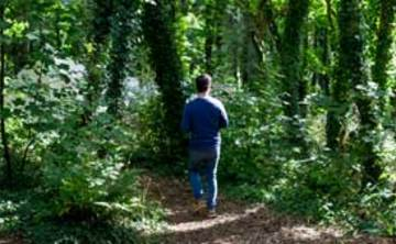 Woodland Retreat: Deepening Connection with Nature (5 nights)
