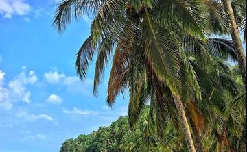 Brighten up in Bocas Del Toro, Panama