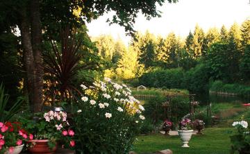 Sun Lotus Lifestyle Retreat Series:   HEART-OPENING WEEKEND June 24-26