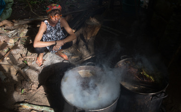 Ayahuasca and master plants individual treatment ( dieta )