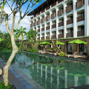 Personality Portraits - A 4 day Bali PD Retreat